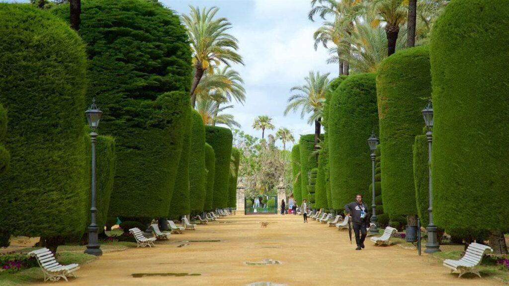 Парк Хеновес в Кадисе